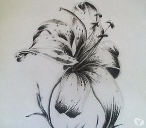 Dibujos Sombreados Con Lápiz Grafito, Carboncillo y Creyón