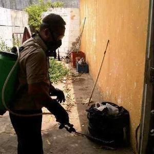 Fumigacion De Garrapatas Y Cucarachas En Maracaibo