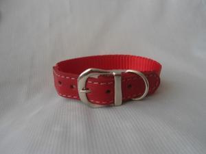 Collar Para Perros En Cuero Y Nylon Importado