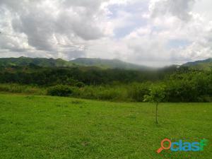 Finca en venta en Tinaquillo, Estado Cojedes 17 0601 asb