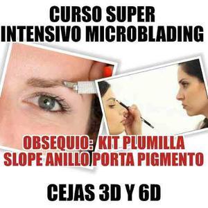 Curso Super Intensivo Microblading Cejas 3d Y 6d Entre Otros