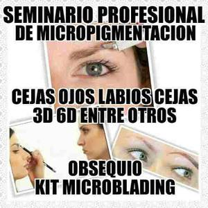 Seminario De Micropigmentación Y Microblading Cejas 3d Y 6d