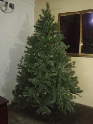 Arbolito De Navidad De 2.10 Mtrs De Alto