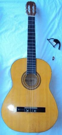 Guitarra Acústica Marca Dixon Modelo SGN C81.