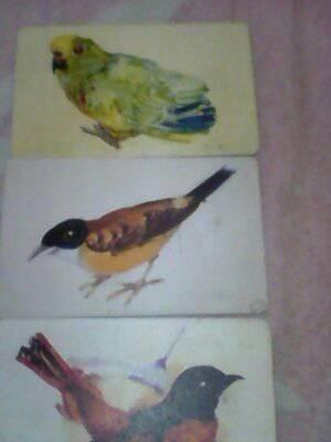 Tarjeta De Coleccion De Cantv Motivo Aves De Venezuela