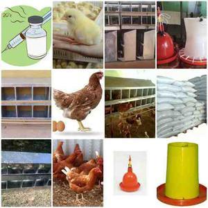 Vendo Todo Tipo De Implementos Avicolas Para La Cria De Aves