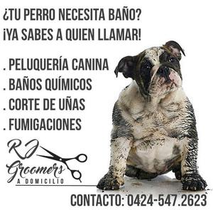 RJ Groomers, peluqueria canina a domicilio