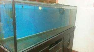 Acuario con mueble de madera 70litros aprox posot class for Mueble acuario