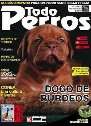 Revista Digital - Todo Perros - Dogo De Burdeos