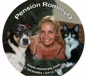 Pensión,hospedaje pequeños animales domésticos