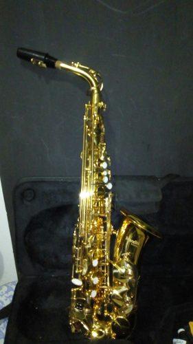 Saxofon Alto, Boquilla, Estuche, Caña, Y Kit De Limpieza