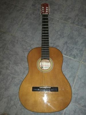 Guitarra Acustica Palmer Pc13lb