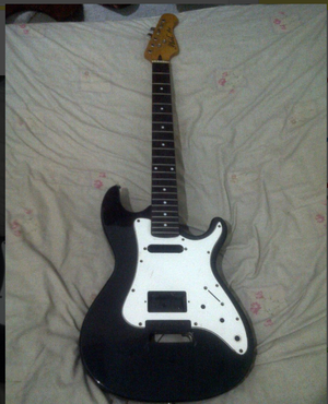 Guitarra phil pro