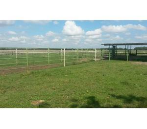 Finca de  hectáreas en La Fe estado Cojedes,  reses