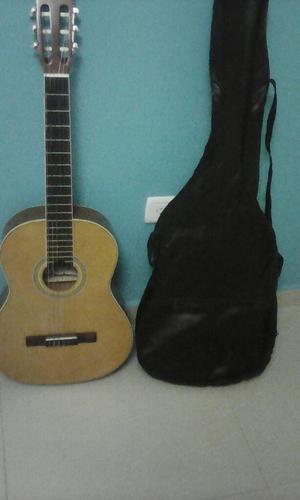 Guitarra Acustica Palmer con Forro