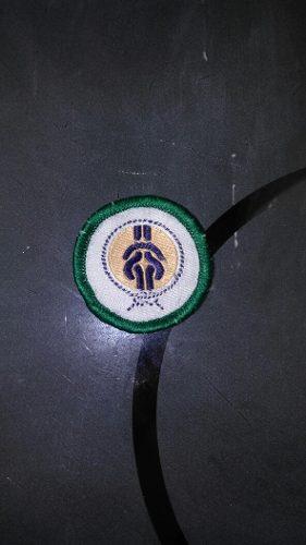 Insignia Scout De Unidad Tropa