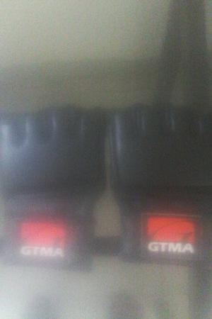 Guantes De Mma (gtma)