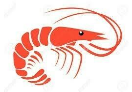 Red Para La Pesca 0,50mm X 5 1/2'' X 120md X 100mt Peso 6kg