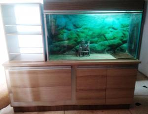 Pescera con Mueble Y Bar