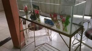 acuario pecera vidrio de 6mm