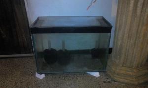 se vende o cambia pecera o acuario