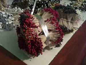 Paquetes De Pistilos Para Floristería Al Mayor
