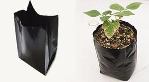 Bolsas Para Vivero Cultivo Semillas Matas 8+3+3x17 X 100 Und