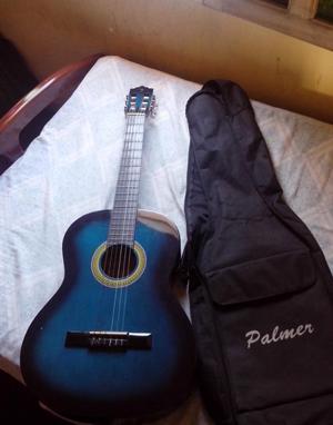 Se Vende Guitarra Acústica Palmer