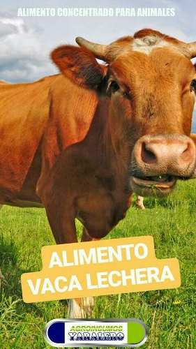 Alimentos Balanceados De Animales