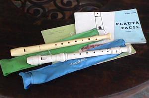Flauta Dulce Hohner Y Maxtone