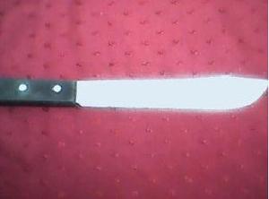 cuchillo de cocinero en acero inoxidable
