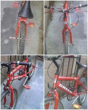 Bicicleta GRECO RIN 20 original