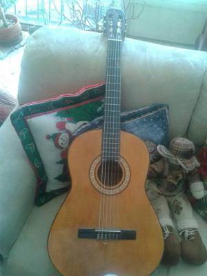 Guitarra Acústica Dixon