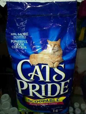 Arena Cats Pride