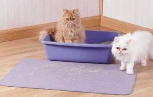Arenera Para Gatos