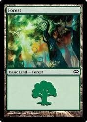Cartas Magic The Gathering - Forest Land