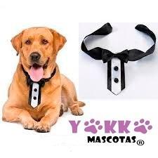 Collar Para Perro Con Moño O Corbata Lazo