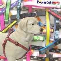 Pechera Ajustable Con Paseador Para Perros Grandes # 25