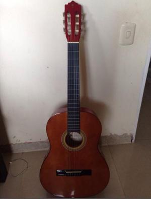 Guitarra Acustica Palmer Española