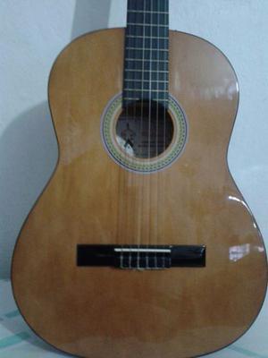 Guitarra Palmer Orginal + Forro Palmer