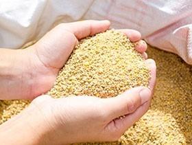 Alimento Balanceado Para Pollos, Iniciador, Engorde, Ponedor