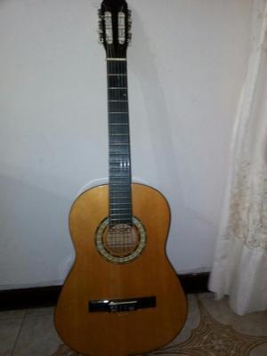 Guitarra Acustica Dixon