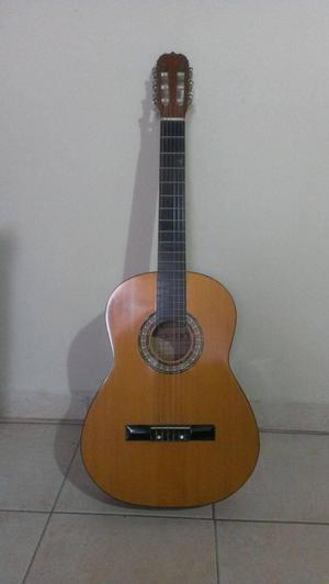guitarra acustica marca dixon
