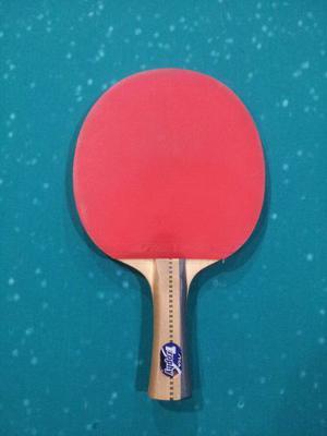Oferta Raqueta Tenis De Mesa Stiga Profesional Ping Pong!!