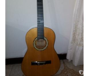 Guitarra Acustica Dixon Rg 818