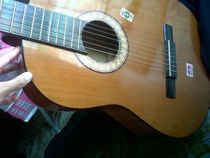 vendo guitarra nueva bella y a buen precio marca mexicana