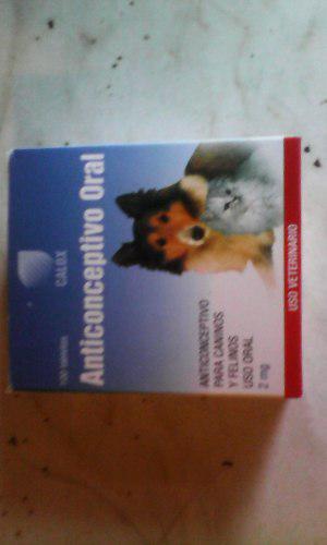 Anticonceptivo Oral Para Perros Y Gatos