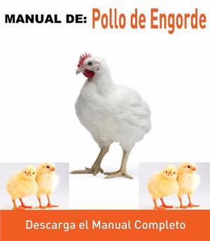 Aprende La Cría De Pollo De Pdf.