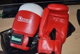 Guantes De Boxeo Dixson 12-oz