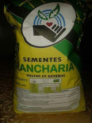 Semilla De Pasto Certificadas Rancharia